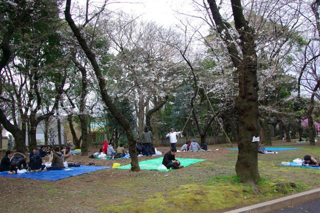 2009.3.27上野公園花見 024 (Small)