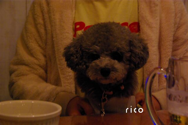2009.3.29あいな&BNカフェ 068 (Small)