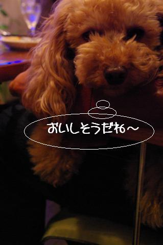 2009.3.29あいな&BNカフェ 106 (Small)