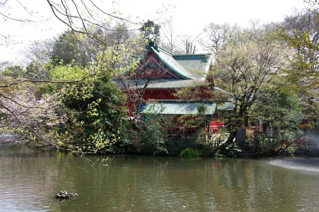 2009.4.3病院・井の頭公園 165 (Small)