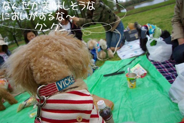 2009.4.16しつけ教室 250 (Small)