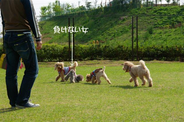 2009.4.19あいな公園 041 (Small)