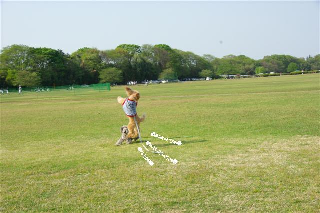 2009.4.19あいな公園 129 (Small)