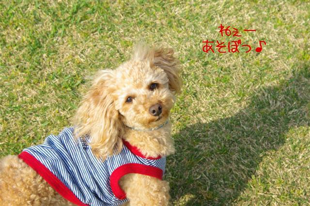2009.4.19あいな公園 119 (Small)