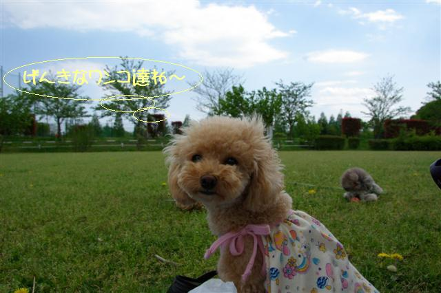 2009.4.23寿花ちゃんと道満 045 (Small)