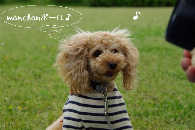 2009.4.23寿花ちゃんと道満 057 (Small)