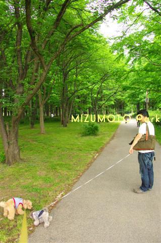2009.5.11水元公園 016 (Small)