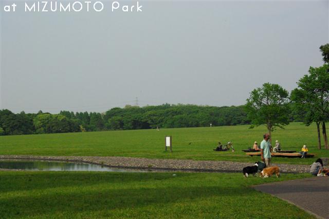 2009.5.11水元公園 038 (Small)