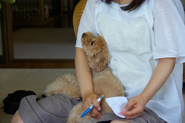 (small)2009.6.12ユキヨ邸 559
