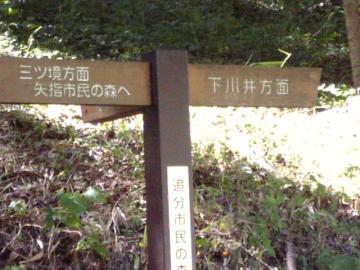 追分市民の森
