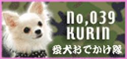 aikengogo_039.jpg