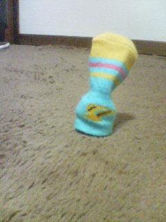 脱ぎ捨てられた靴下