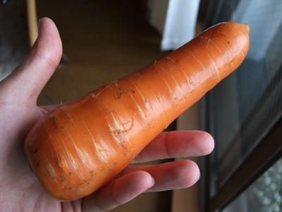 写真:お取り寄せ野菜