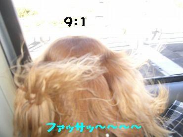 CIMG5422.jpg