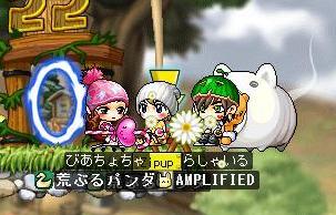 Maple0004_20081014114527.jpg