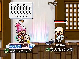 Maple0048_20080922121331.jpg