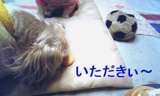 love_20070225_1