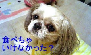 love_20070225_2