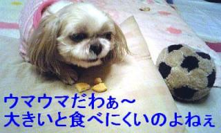 mint_20070225_8