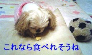 mint_20070225_7