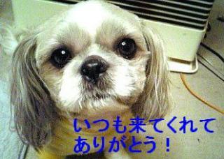 love_20070227_1