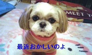 mint_20070301_1