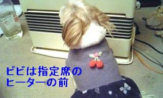 bibi_20070312_1