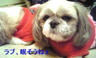 love_20070312_1