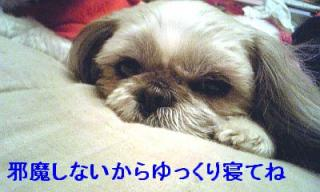 love_20070312_3