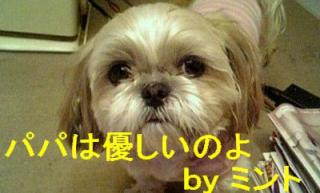 mint_20071121_2