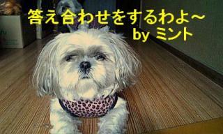 mint_20071202_1