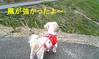 mint_20071209_2