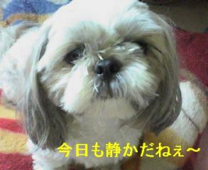 love_20060816_1