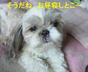 love_20060816_2