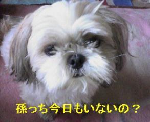 mint_20060816_1