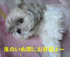 mint_20060816_2