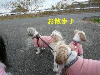 oyako_20071215_1