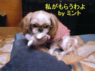 mint_20071216_2