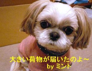 mint_20071216_5