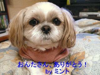 mint_20071220_2