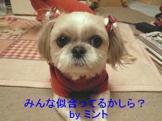 mint_20071222_2