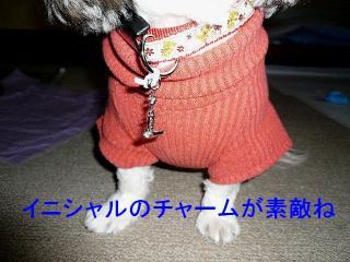 love_20071223_1