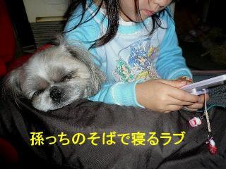 love_20071223_4