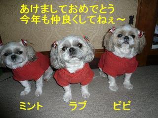 oyako_20080101_1