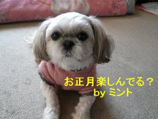 mint_20080101_5