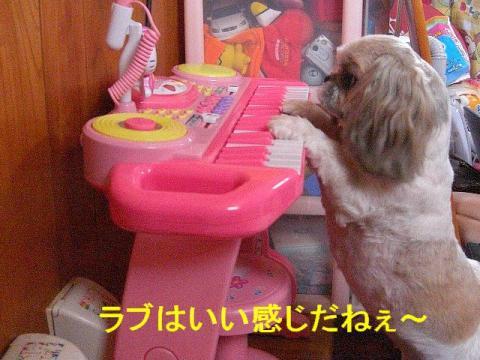 love_20080607_3
