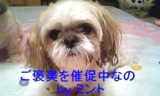 mint_20071123_1