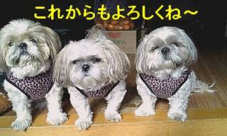 oyako_20071202_1