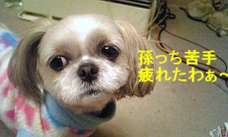mint_20071206_7