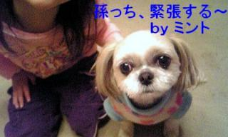 mint_20071206_2